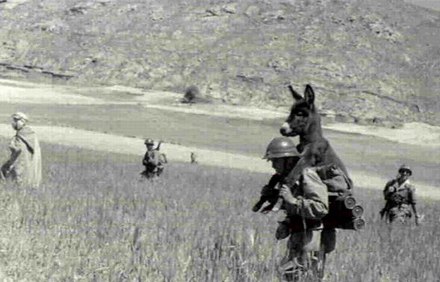 Donkey Riding on WWII Soldier