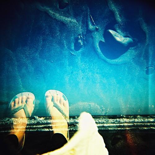 ふたつの海