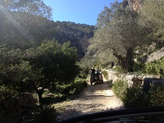 Jeep Safari Majorca