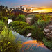 Conejo Creek Sunset by Extra Medium
