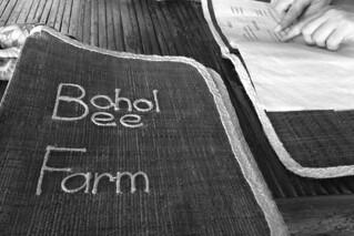 Bohol - Bohol Bee Farm