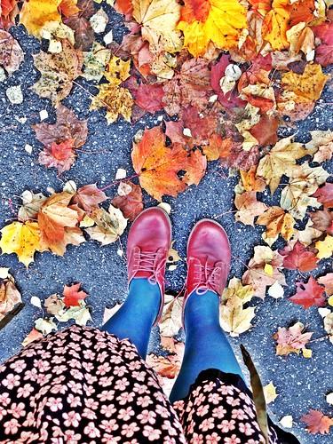 autumn suburb stockholm