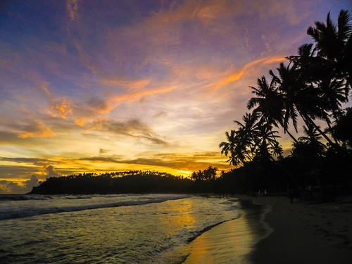 sunset colour beach silhouette clouds paradise palmtree tropical srilanka coconuttree shape mirissa