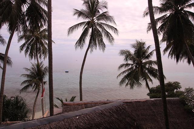 Freddie's guesthouse, Sumur Tiga, Pulau Weh