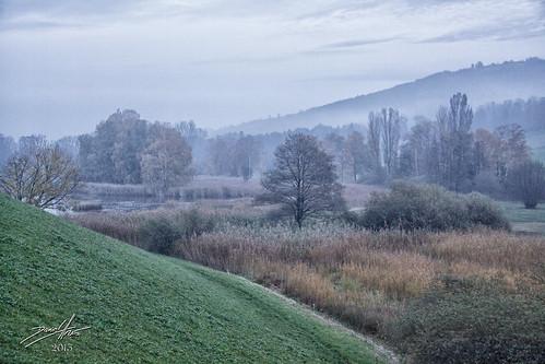 mist castle fog switzerland pond nebel che bara schloss château burg sanktgallen weiher naturschutz magla 2013 untereggen dalmatino mygearandme mygearandmepremium mygearandmebronze möttelischloss