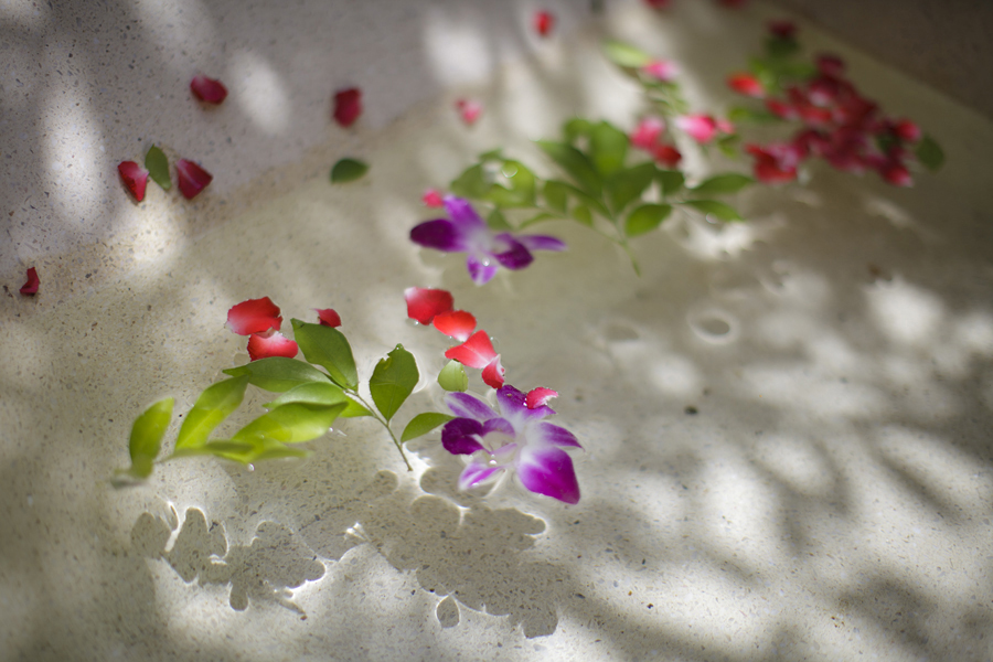 maenam beach Samui Thailand Saree hotel exotic flowers garden bath