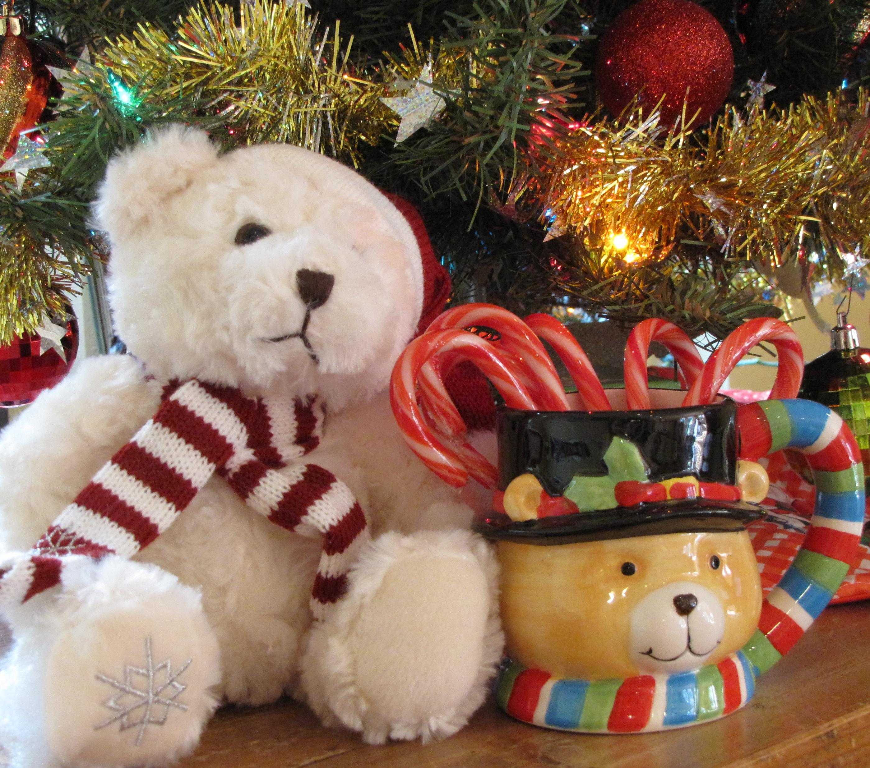 Teddy Mug with Friend