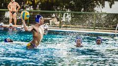 water & ball sports, water polo, swimming pool, water, swimming, sports, recreation, outdoor recreation, leisure, team sport, water sport, ball game,