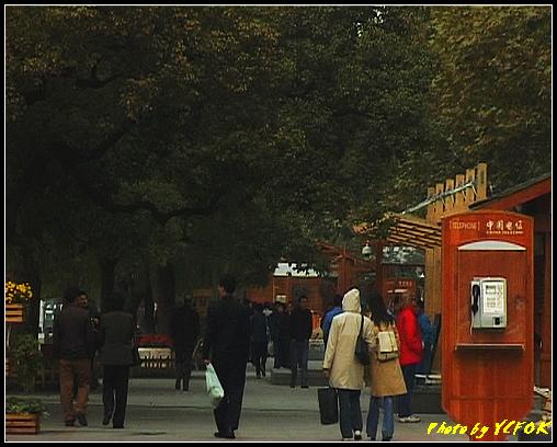 杭州 西湖 (其他景點) - 034 (湖濱路的湖畔)