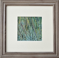 Bluestem & Sage #1, 2014  (sold)