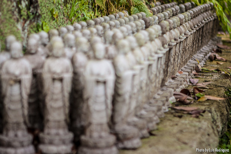 Templo Hasedera en Kamakura-15