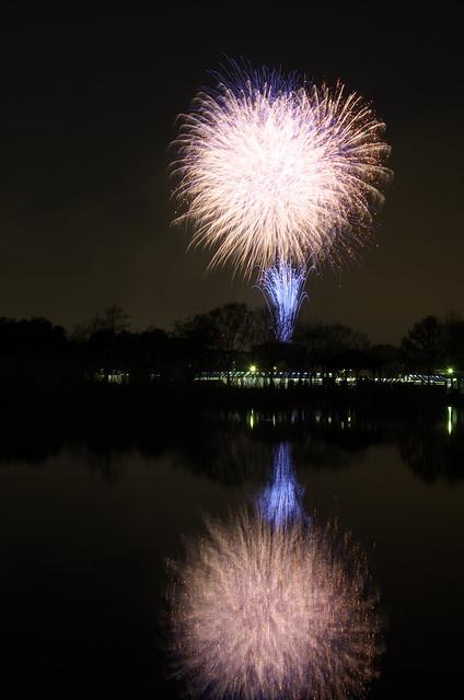 舎人公園「春の花火と千本桜まつり」 2014年4月5日