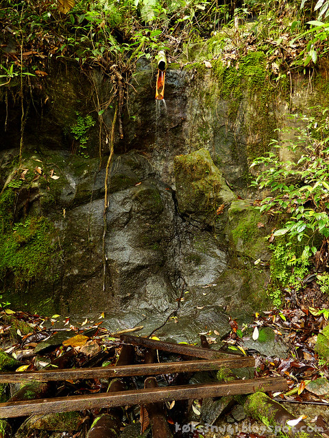 Mount Serapi Shower