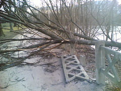 Januar 27, 2008 Damage after a stormy night