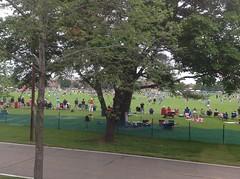 Lax tournament on Rogers Field