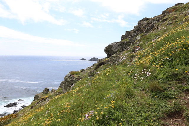 Cornwall 2013