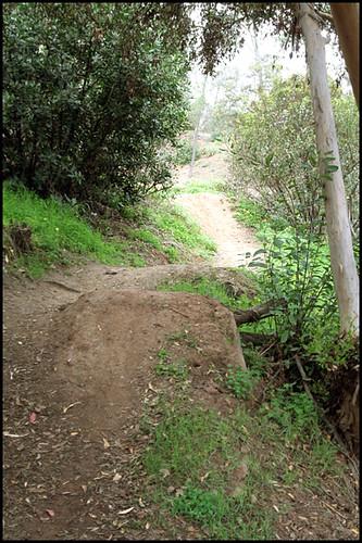 Balboa BMX Trails (3)