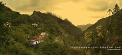 Amanecer en la selva (Ribeiro Frío, Madeira)