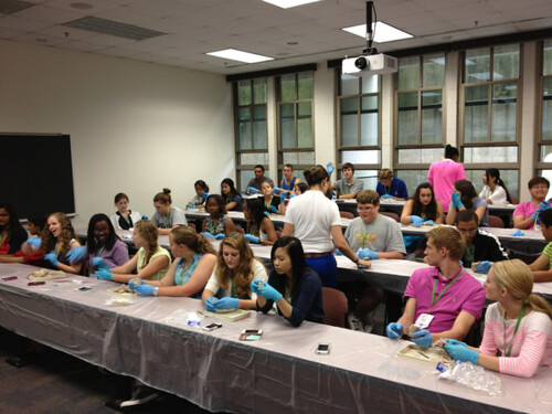 NSLC HEAL Dissections