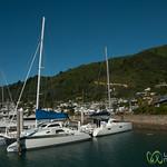 Picton Harbor - New Zealand