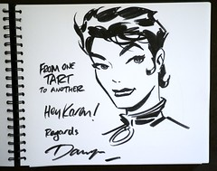 Darwyn Cooke - Catwoman by Karon