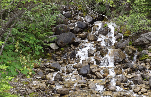 little falls at hungry horse 063