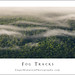 Fog Tracks by Sugar Mountain Photography