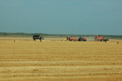 tractor canada straw manitoba stpierre baler stpierrejolys
