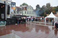 Zwiebelmarkt 2013