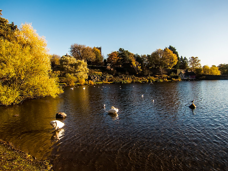 duddingston_loch_14