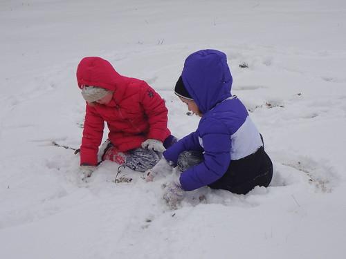 Snow Day 8