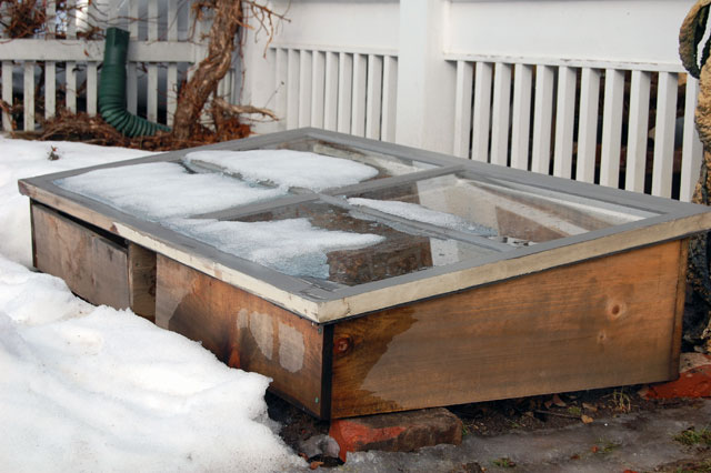 cold-frame-in-winter
