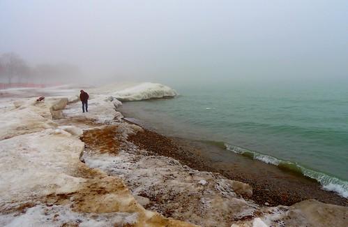 Dog Walk In Winter Fog