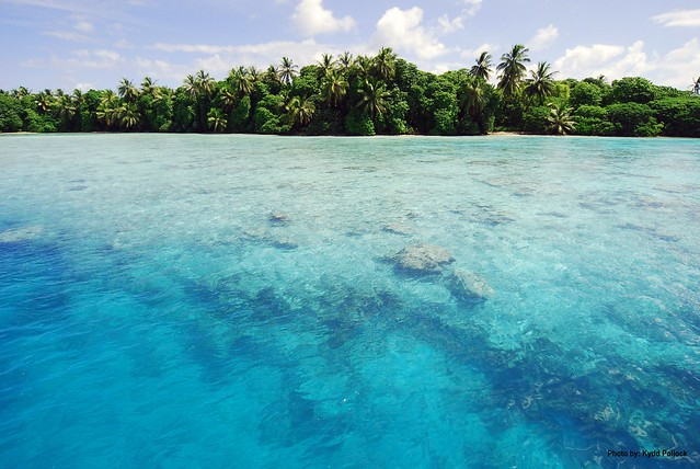 Palmyra Atoll National Wildlife Refuge is home to shallow water flats that serve as nursery grounds for many marine species.  Photo Credit: Kydd Pollock