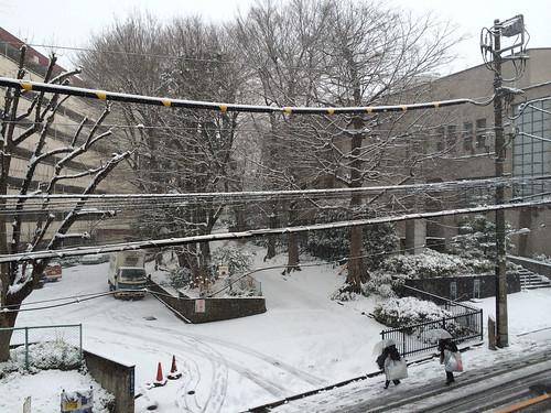 2014年2月8日の雪 午前
