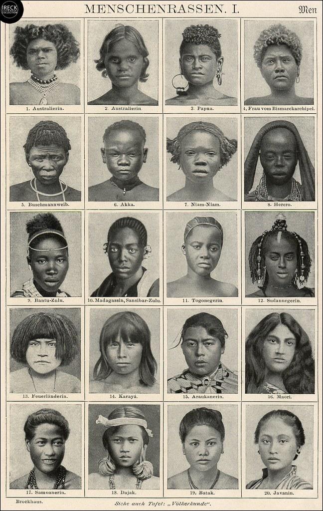 Rasse Weiber