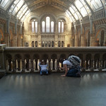 Peering out over the Natural History Museum
