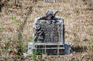 Liberty Springs Presbyterian Church and Cemetery-004
