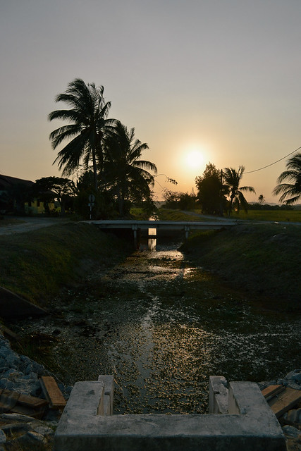 Sunset slipping into the irrigation canals.