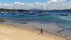 Take pleasure by glancing at the Watsons Bay - Things to do in Sydney
