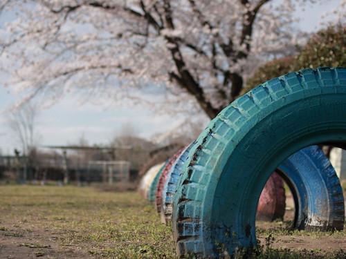 桜の咲く頃また来よう。