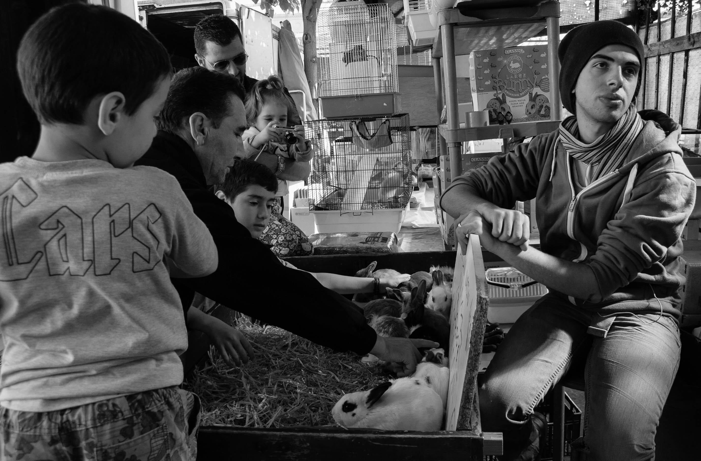 Bunny Seller - La Cite Outdoor Market - Paris