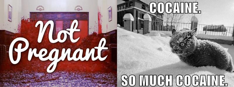 PicMonkey Collagehaha