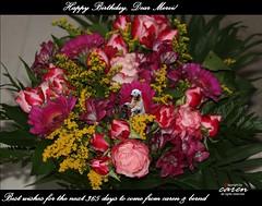 Mervi's Birthday Greetings 2013