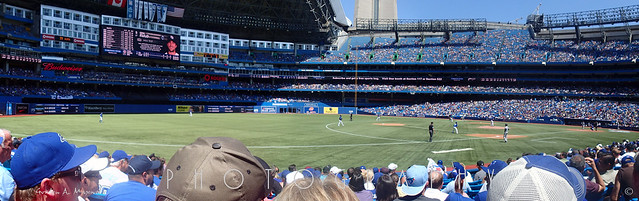 Rogers Center Blue Jays baseball
