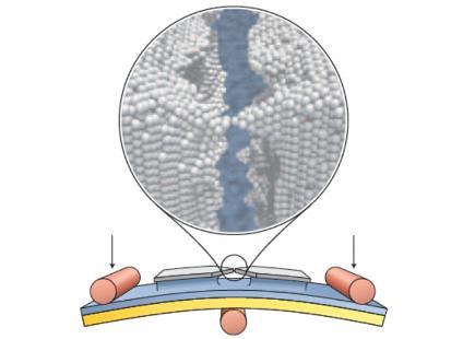 Interruptor de un átomo