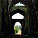 Mandu_Gada_Shah-18