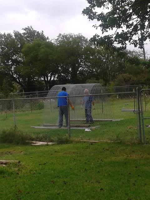 September 2013 Garden