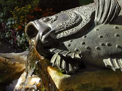 Flatfish Fountain, Castle Sanssouci - Potsdam - Autumn still life