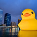 Rubber Duck Taiwan Tour:  Kaohsiung (黃色小鴨) by Jennifer 真泥佛 (Busy... Post & Run)